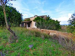 Terreny en venda calle Diseminado Diseminados Var, Santa Eugènia - 359259712