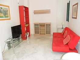 Salón - Apartamento en alquiler en calle Pages del Corro, Triana en Sevilla - 313753880