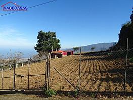 Foto 6 - Terreno en venta en Realejos (Los) - 306641314