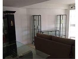 Piso en alquiler en calle Federico Molina, Huelva - 355459018