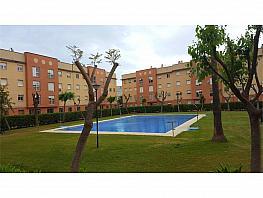 Piso en alquiler en calle Puertas del Sur, Jerez de la Frontera - 336011536