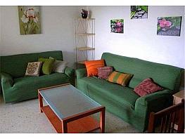 Piso en alquiler en calle San Joaquín, Rural en Jerez de la Frontera - 348577393