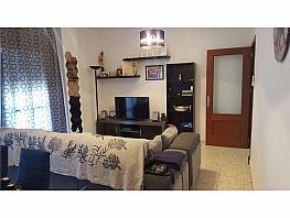 Piso en alquiler en Chiclana de la Frontera - 348576985