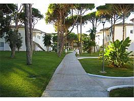 Apartamento en alquiler en Chiclana de la Frontera - 376883664