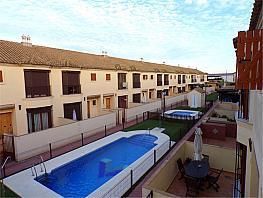 Chalet en alquiler en Rural en Jerez de la Frontera - 381051110