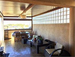 Ático en alquiler en Noreste-Granja en Jerez de la Frontera - 386803149