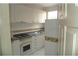 Piso en alquiler en Santander - 305638234