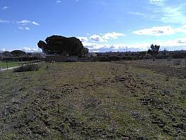 Terreno - Parcela en venta en calle Camíno Viejo Madríd Burgos, Molar (El) - 305987669