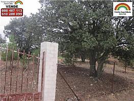 Terreno en venta en Casar de Escalona (El) - 316763500