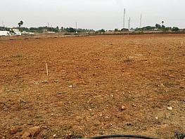 Land for sale in Dos Hermanas - 338955670