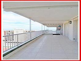 Piso en venta en Playa Mucha Vista en Campello (el) - 320301476