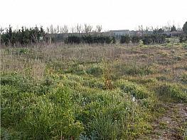 Grundstück in verkauf in calle Gonzalo Cuadrado, San Miguel del Pino - 320313109