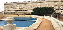 Piscina - Casa adosada en venta en calle Alberique, Altabix en Elche/Elx - 356635098