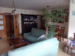 Piso en alquiler en calle Av Campanar, Campanar en Valencia - 335441899