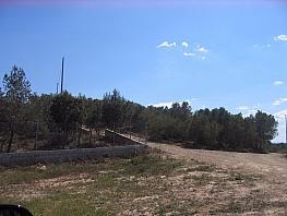 Grundstück in verkauf in calle La Mobilaria, Murcia - 393961613
