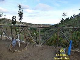 Foto1 - Finca rústica en venta en Cajiz - 343766652