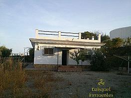 Foto1 - Casa en alquiler en Torrox - 353009033
