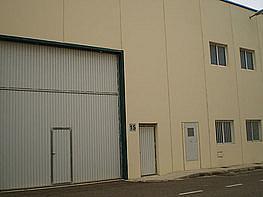 Nave industrial - Nave industrial en venta en calle Xocolaters, Riba-roja de Túria - 377868192