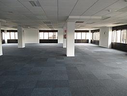 Oficina en alquiler en Moraleja, La - 346309301