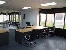 Oficina en alquiler en Moraleja, La - 346309436
