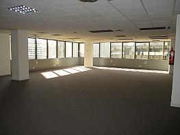 Oficina en alquiler en calle General Perón, Cuatro Caminos en Madrid - 346310258