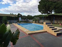 Rural property for sale in Utrera - 354166484
