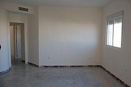 Piso en alquiler en calle San Vicente de Paul, Triana en Sevilla - 344961794