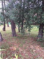 Terreny en venda carrer Riells i Viabrea, Riells i Viabrea - 356090041
