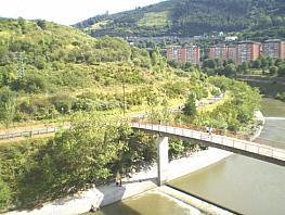 Flat for sale in calle Zamakola, La Peña in Bilbao - 350414595