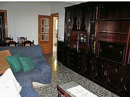Salón - Piso en alquiler en calle Mendez Nuñez, Raspeig en San Vicente del Raspeig/Sant Vicent del Raspeig - 354195953