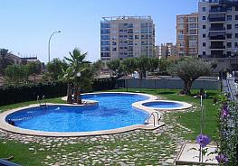 Piscina - Piso en alquiler en calle Babel, Babel en Alicante/Alacant - 362091592