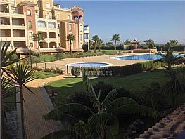 Apartamento en alquiler en calle Avenida de Las Codornices, Isla de Canela - 354709749