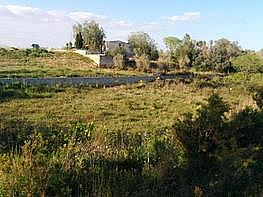 Xalet en venda passatge Mangrané, Ulldecona - 386181312