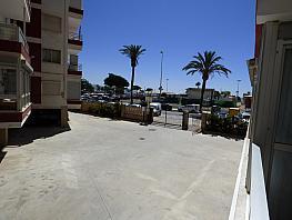 Piso en alquiler en paseo Maritimo de Poniente, Torre del mar - 312571453