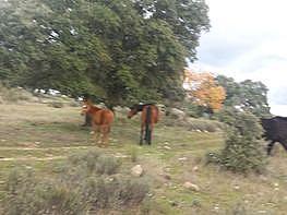 Grundstück in verkauf in polígono Industrial Colmenar del Arroyo, Colmenar del Arroyo - 347124556
