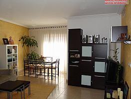 Piso en alquiler en calle Almasera, Centro en San Vicente del Raspeig/Sant Vicent del Raspeig - 333127833