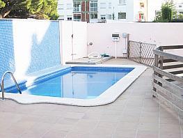 Piscina - Casa en alquiler en Playa en Castelldefels - 332013588