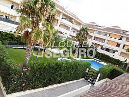 Piso en alquiler en calle Acebuche, Benalmádena Costa en Benalmádena - 320527883