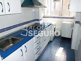 Piso en alquiler en calle Lopez de Gomara, Triana en Sevilla - 327883381