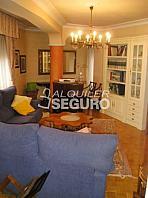 Piso en alquiler en calle Los Herrán, Casco Viejo en Vitoria-Gasteiz - 362619907