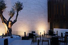 Terraza - Local comercial en alquiler en San Vicente del Raspeig/Sant Vicent del Raspeig - 136694035
