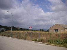 Gewerbegrundstück in miete in calle Principal, Maçanet de la Selva - 325438