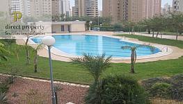 Piscina - Apartamento en venta en calle Municipi, Levante en Benidorm - 339112023