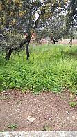 Parcela en venta en urbanización Avda Encinar, Urb. Encinar del Alberche en Villa del Prado - 266432099