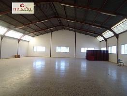 Foto - Nave industrial en alquiler en calle Boch, Crevillent - 287855607