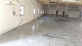 Foto - Nave industrial en alquiler en calle Llano de San Jose, Llano de San Jose en Elche/Elx - 292714741