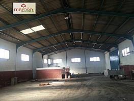 Foto - Nave industrial en alquiler en calle Algoros, Elche/Elx - 293759869