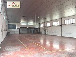Foto - Nave industrial en alquiler en carretera Del Leon, Matola en Elche/Elx - 328753942