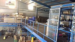 Foto - Nave industrial en alquiler en calle Llano del Espartal, San Gabriel en Alicante/Alacant - 330599318