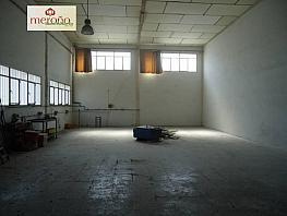 Foto - Nave industrial en alquiler en calle Algoros, Elche/Elx - 340830040
